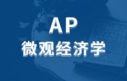 AP微观经济学辅导培训
